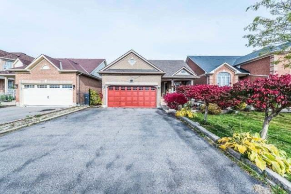 21 Orchid Dr, Brampton