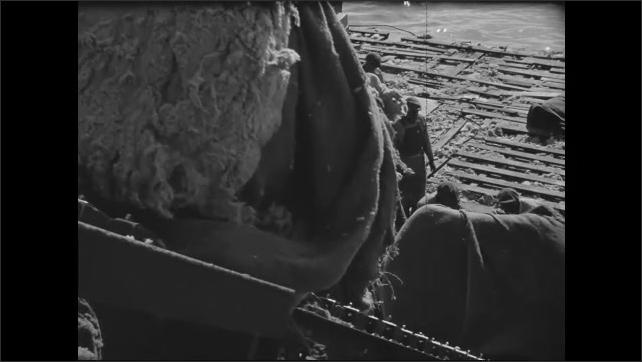 1940s: High angle, men pushing bales of cotton up conveyor belt.