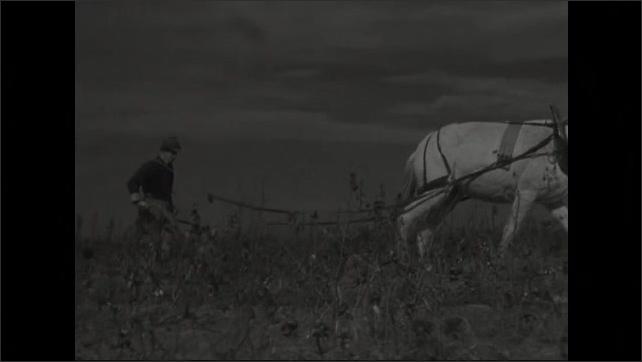 1940s: Horse drawn plow in field.