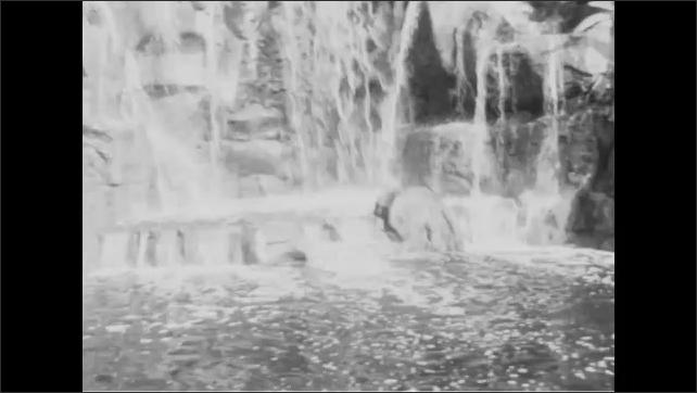 1950s: Jungle boat glides past waterfalls and animatronic elephants. Animatronic man stands near burning cabin. Animatronic animals move near jungle boat ride.