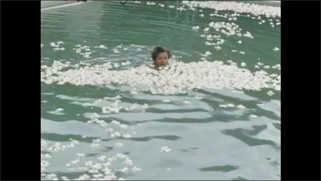 1950s: Older couple swim in pool among floating white blossoms.