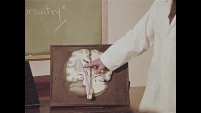 1970s: Boy eats ice cream cone. Man in lab coat points to diagram of brain and speaks. Woman standing in kitchen speaks.