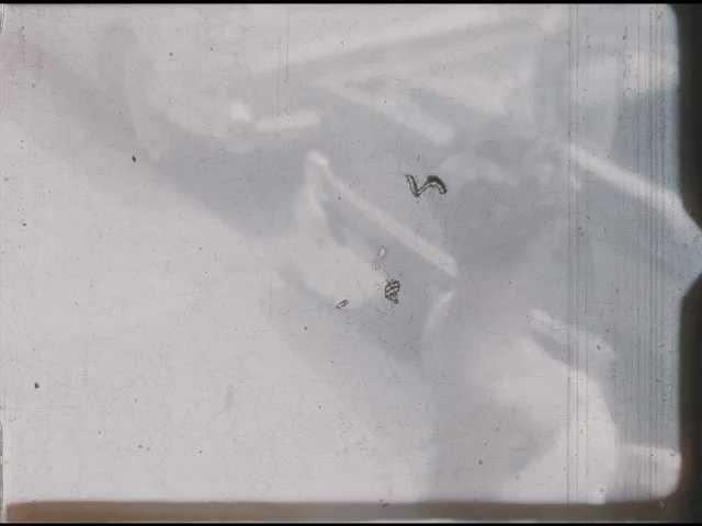 1960s: Close up shots, woman outside in bathing suit. Boy on sidewalk. Woman by car, waving.