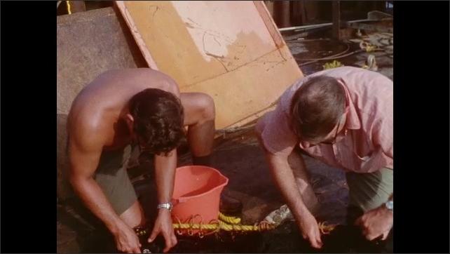 1970s: Sea creatures in net. Men pick sea creatures off fishing net. Man throws explosive into water. Man adjusts equipment.
