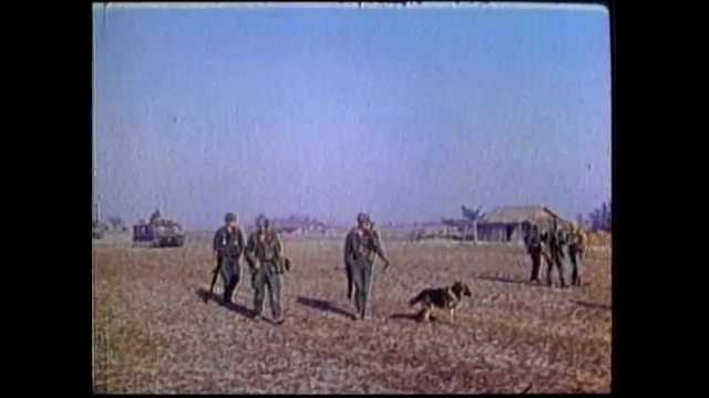 1970s Vietnam: Soldiers and dogs walk in field. Spotter plane flies over jungle. Soldier displays AK47. Soldier fires machine gun into tall grass. Troops carry casualties toward medivac helicopters.