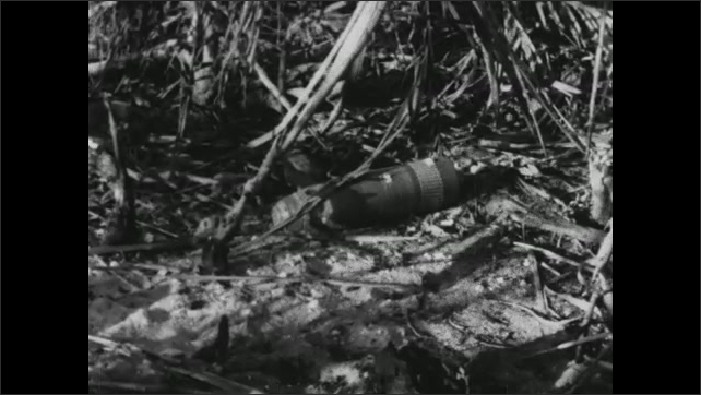 1940s: View of debris in ditch. Palm trees waving. Marks carved in tree. Artillery shell on ground. Shots of debris on ground. Artillery shell. View of smoke over water. Pan of water, shoreline.