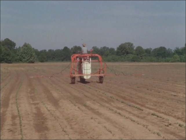 1960s: UNITED STATES: man drives machine in field. Man plants seeds in soils.