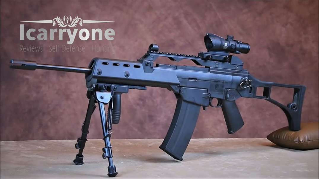 Cool Aftermarket Accessories For The Ruger 10-22