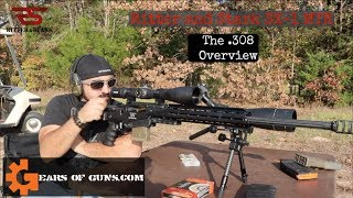 Ritter and Stark SX-1The 308 Overview
