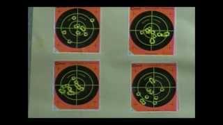 Bee's bullet marksmanship challenge M&P40