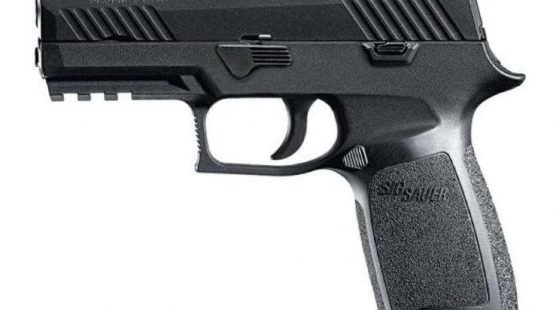 Sig P320 FCU Removal and Install