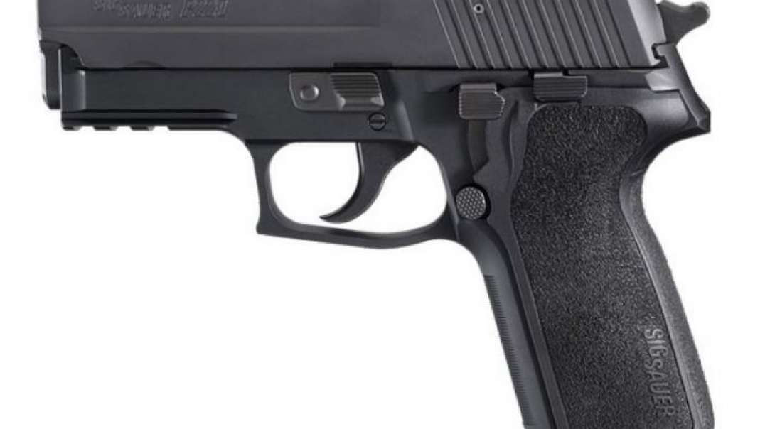 Sig Classic E2 Grip Removal and Install