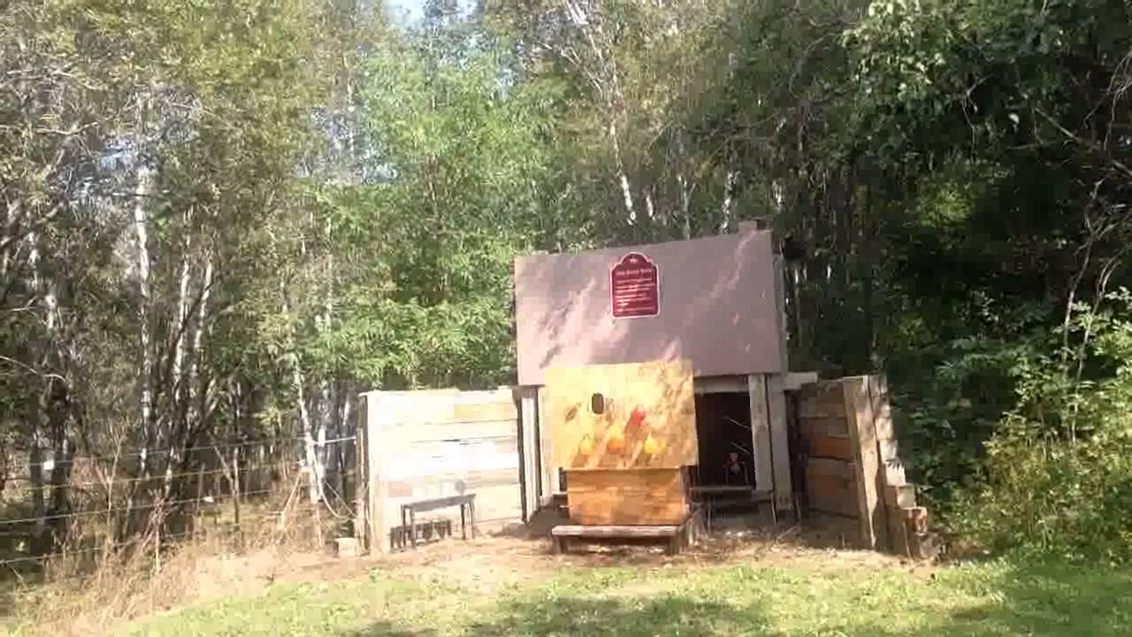 Shooting the Ruger LCR 22LR