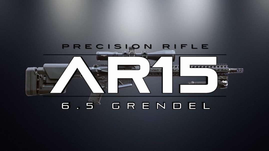 Precision Rifle - 6.5 Grendel (parts chosen)