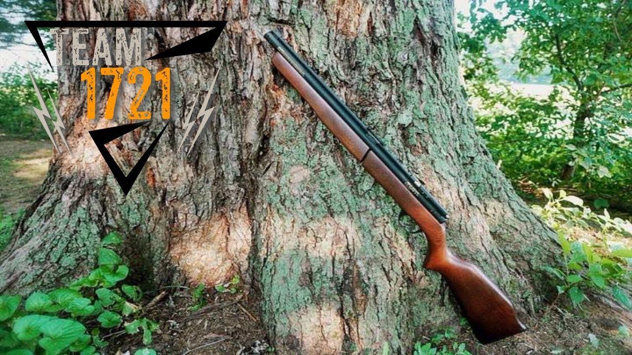 Benjamin 392 Ammo Test & Review