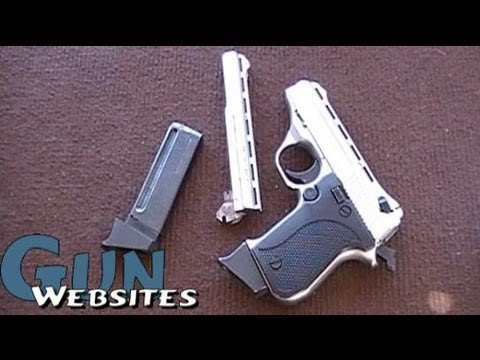 Phoenix Arms HP-22