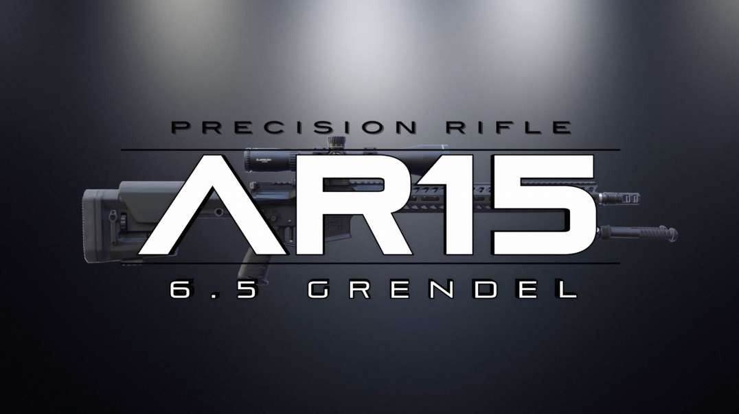 Precision Rifle - 6.5 Grendel (assembly)