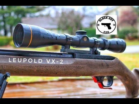 BEST SCOPE UNDER $300? LEUPOLD VX-2!