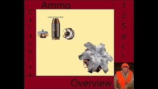 Shield 40 Ammo Rundown