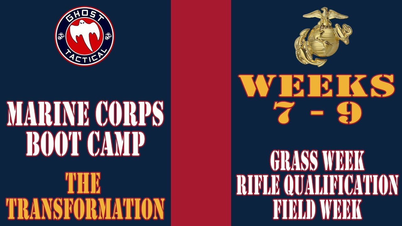 Marine Corps Boot Camp:  Weeks 7-9:  Grass Week, Rifle Qualification, Field Week