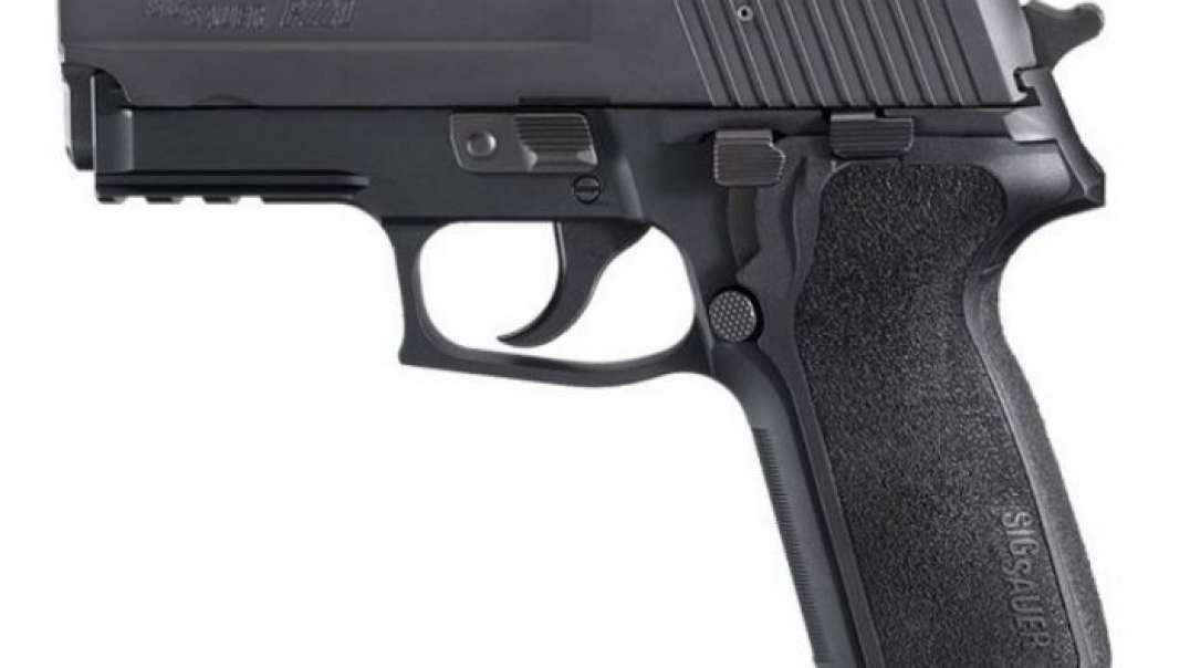 Sig Classic (P220 P225 P226 P228 P229 P239 P6 M11) Field Strip