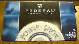 .308 win Federal Power Shock SP 180 gr Gel Test