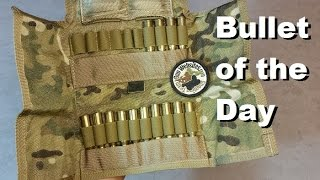 Bullet of the Day: 7.62x54R Pouch