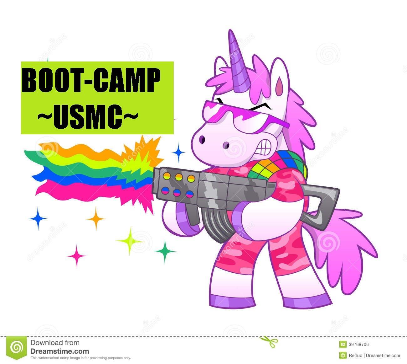 Marine Corps Boot Camp Majestic Unicorn Story