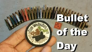 Bullet of the Day:  5.56x45mm Collection