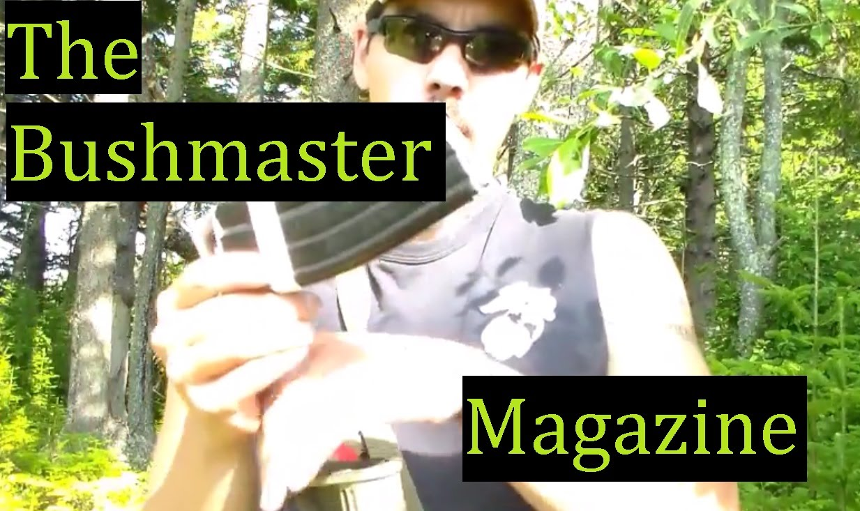 Bushmater AR15 Magazine Review