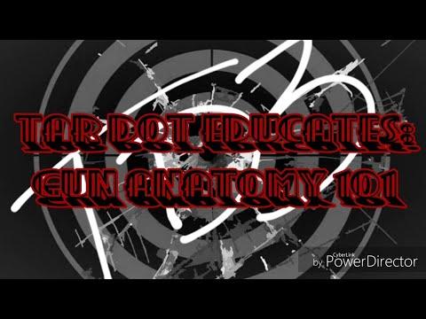 Tar Dot Educates: Gun Anatomy 101