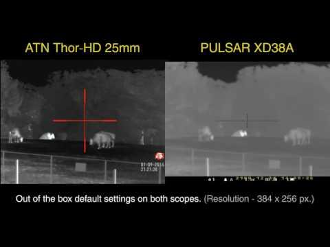 Thermal Rifle Scope Comparison | ATN ThOR-HD 384 25mm vs Pulsar Apex XD38A