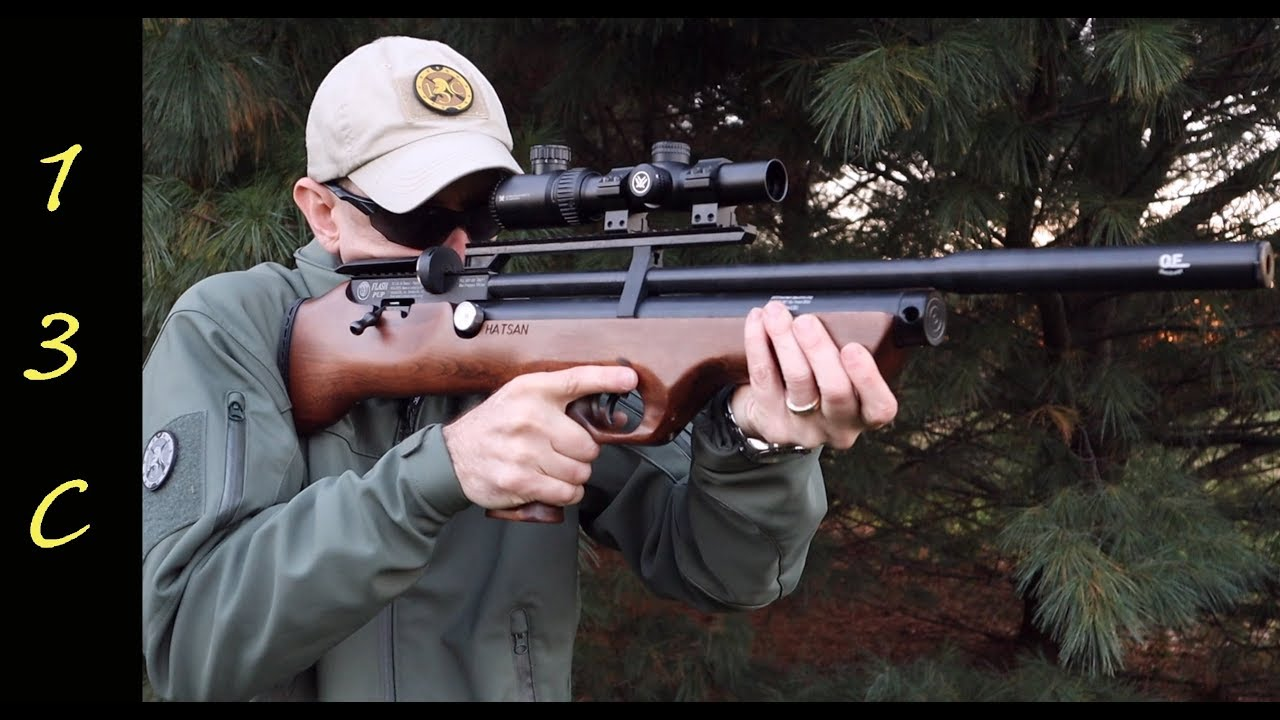 Hatsan FlashPup PCP Air Rifle Review and Accuracy testing