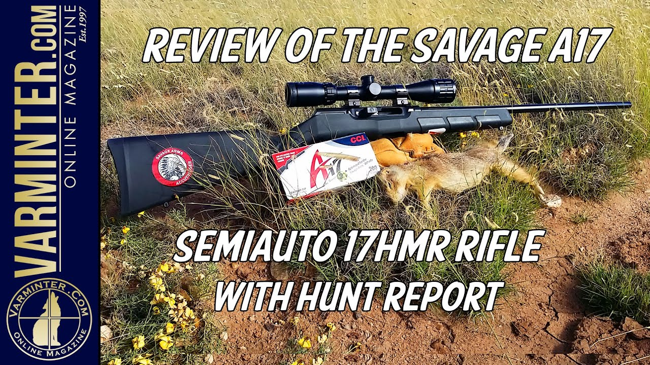 Review of the Savage A17 Semi Auto 17HMR Rifle with Hunt Report