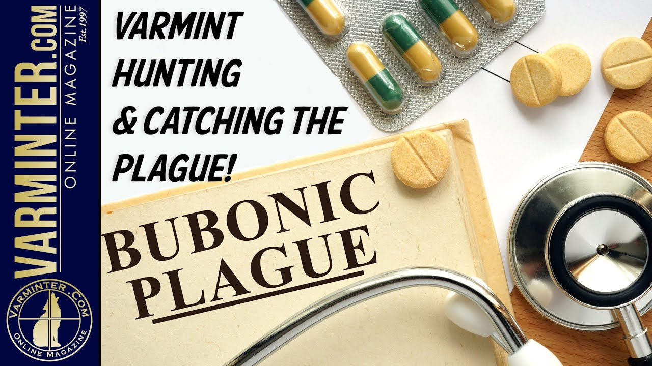 Varmint Hunting and Catching The Plague - Protect Yourself