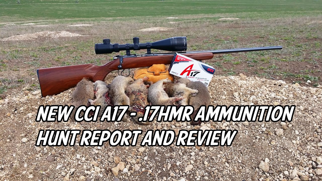 New CCI A17 - .17 HMR Ammunition Hunt Report and Review