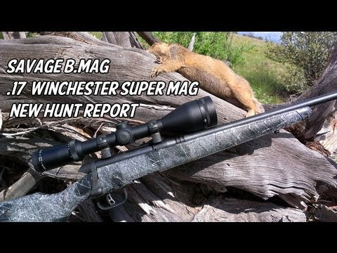 Savage BMAG 17 Winchester Super Mag - New Hunt Report