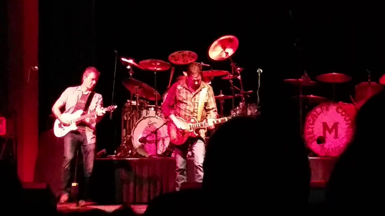 Artimus Pyle Band - Freebird Live at the State Theater