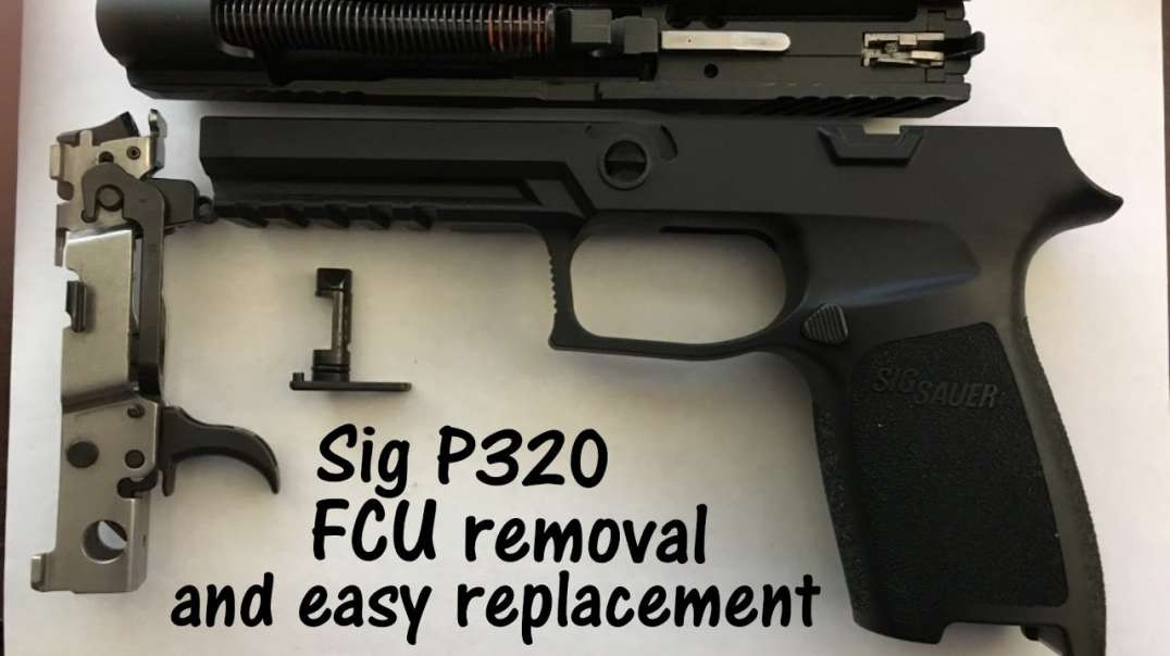 Sig P320 Removal of Fire Control Unit (FCU) and easy reinstall with a trick to insert pin easy