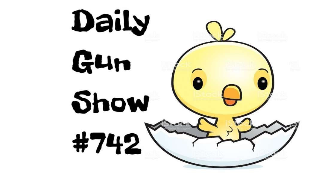 2A in 2019 - Daily Gun Show #742