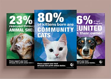 Non-Profit Posters